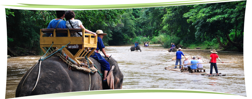 thai kingdom tours