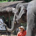 2-Day Chiang Mai Highlights Tour